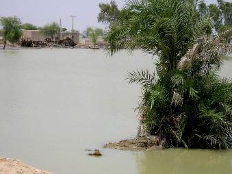洪水で被害を受けた家屋と水の引かない周辺